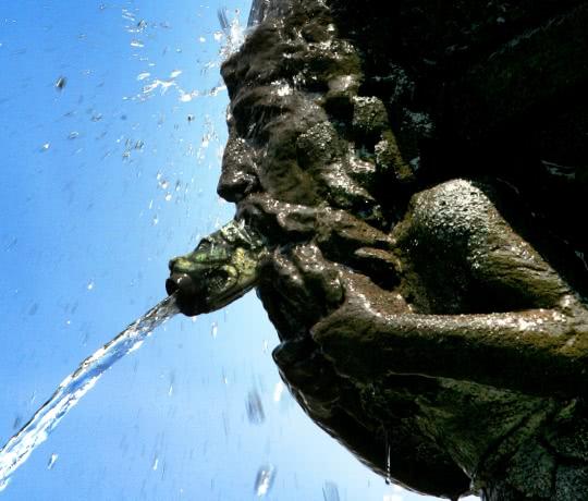 détail fontaine d'amboise