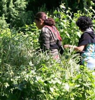 jardin botanique de la Charme