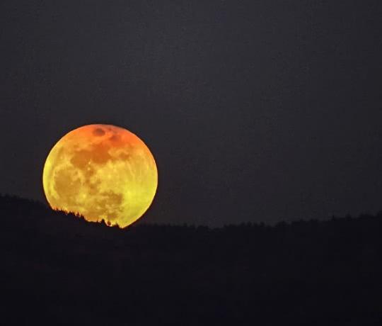 éclipse lune rousse