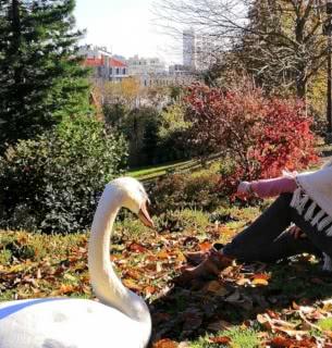 automne jessica jardin lecoq