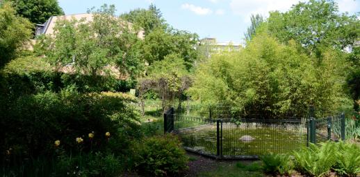 Jardin du Museum