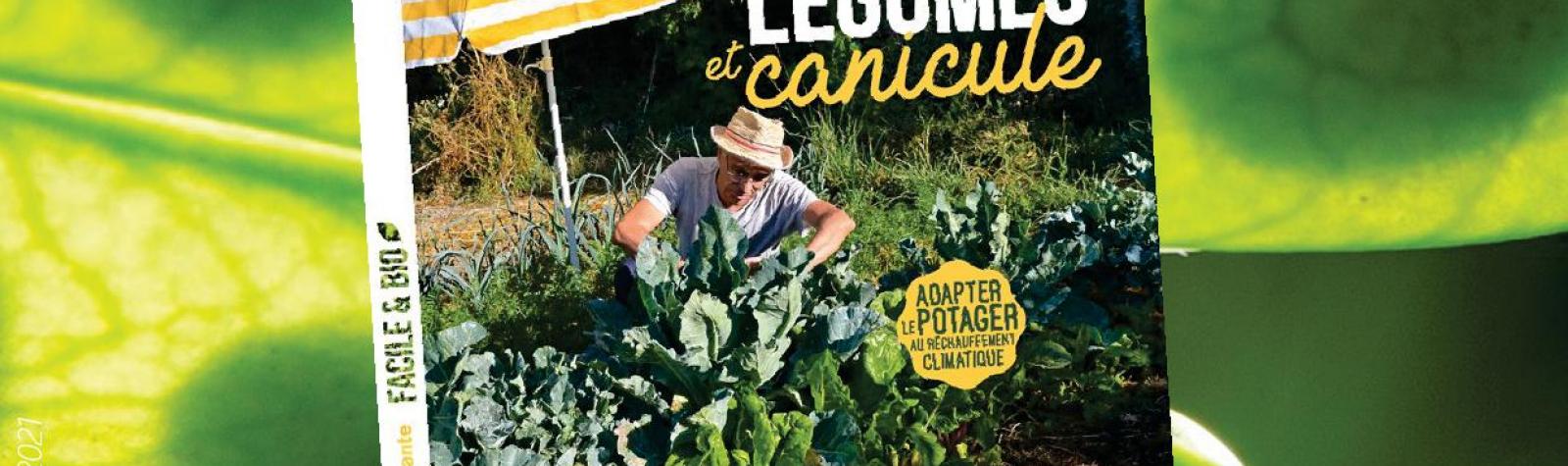 © Affiche conférence légumes et canicule