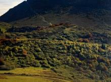 Le puy de Dôme (vue sur le volcan)