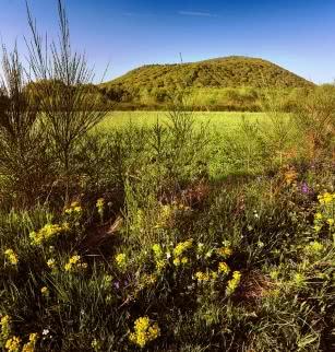 Le puy de Louchadière (vue sur le volcan)