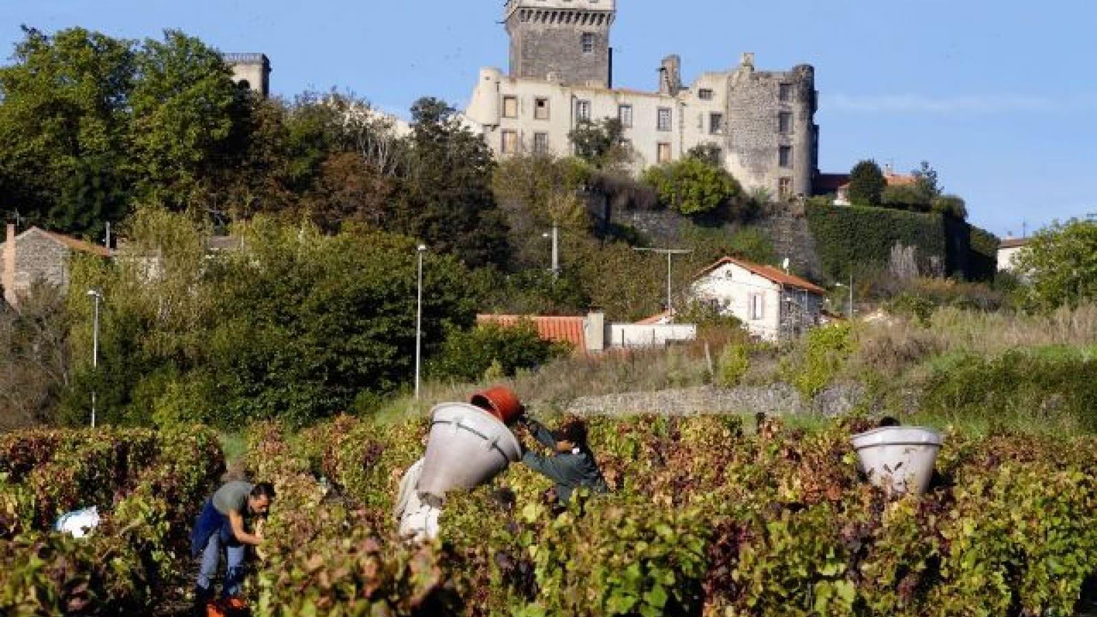 Château de Châteaugay