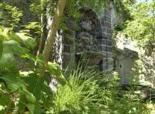 Les vendredis nature : le jardin Lecoq - La roseraie