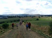 Promenade du jeudi : Plateau nord aux confins des Monts Dore
