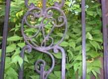 Visite inédite : Le cimetière de Chamalières