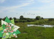 Chantier Nature : ENS du Marais de Lambre