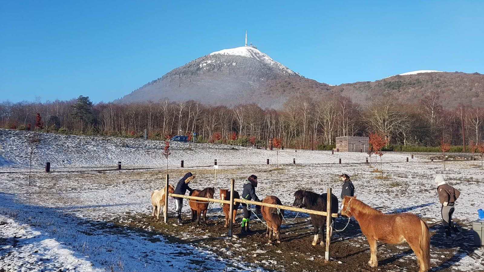 les Hivernales - Les baptêmes à poneys