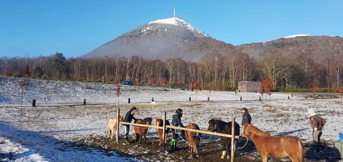 Baptêmes à poneys - Les Hivernales