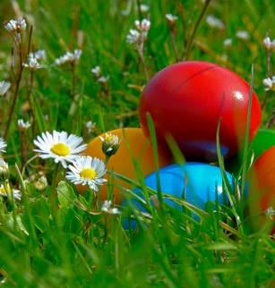 Grande chasse aux œufs de Pâques dans le parc Montjoly