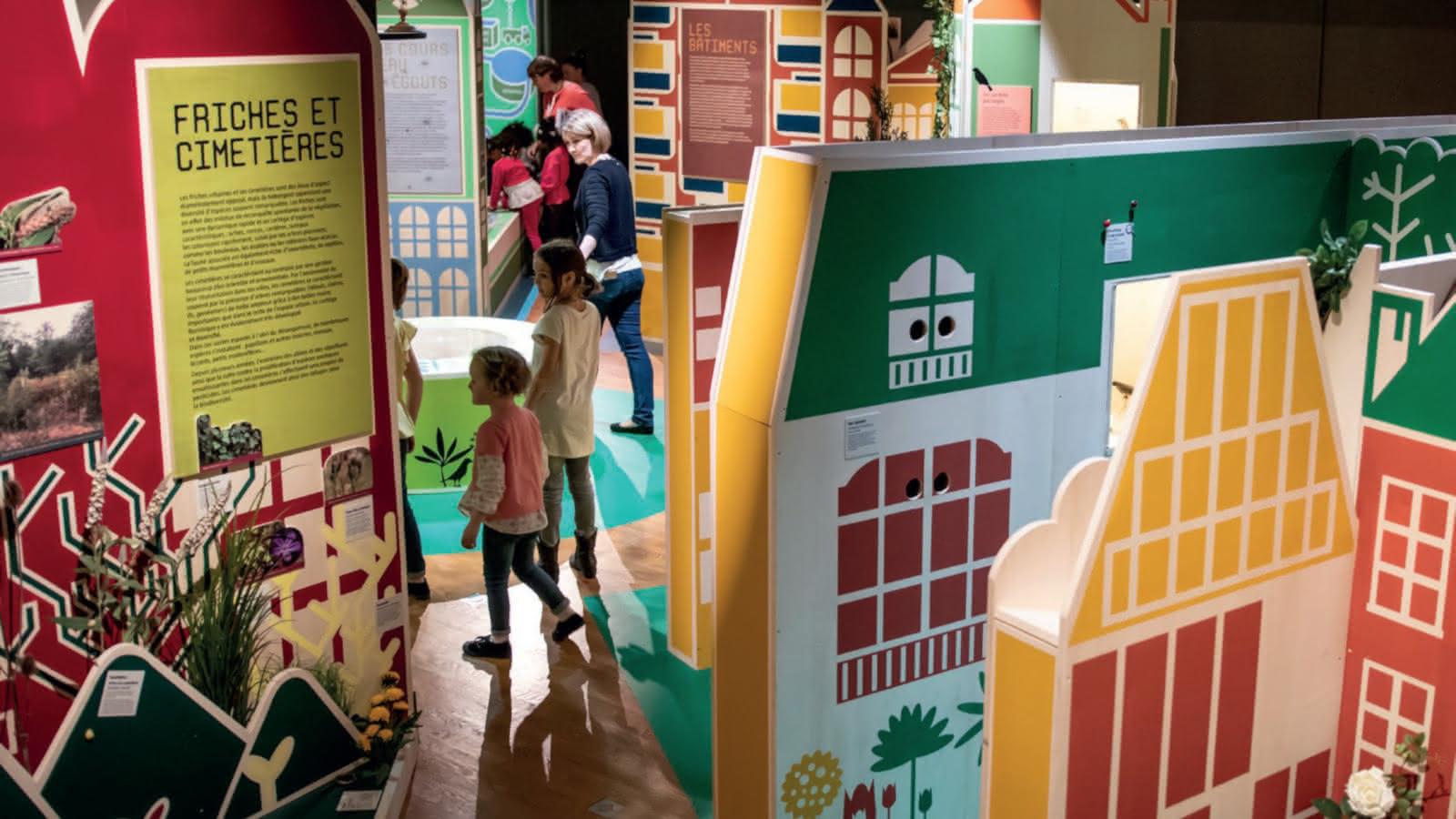 Muséum Henri-Lecoq - Graine de science : Petite histoire au muséum