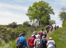 Promenade du Jeudi