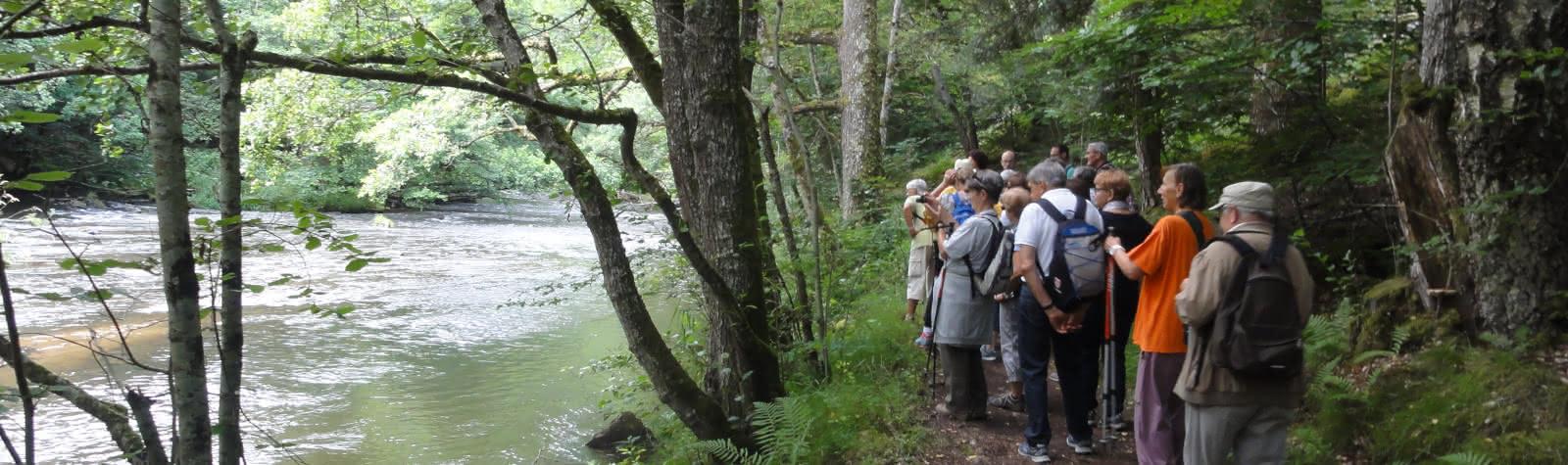 Promenade du jeudi : Du Puy de Bessolles aux côtes de la couze Pavin
