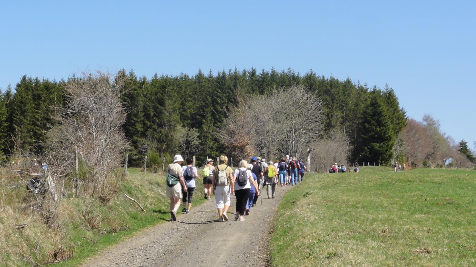 Promenade du jeudi : Aux marges des Monts Dores, la cascade de la Graille