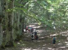 Promenade du jeudi : Patrimoine et col au pied d'un Géant
