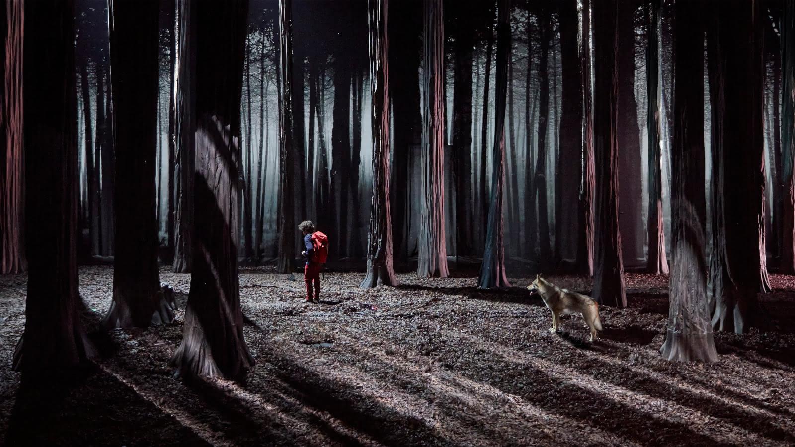 Le bruit des loups – Etienne Saglio / Montre(s)