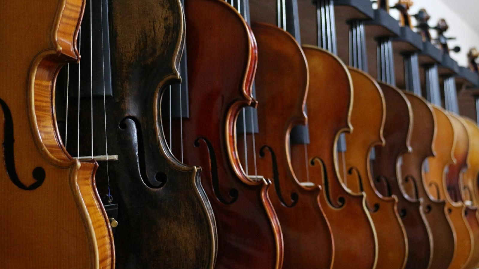 Les amis de la musique : Quatuor Zaïde