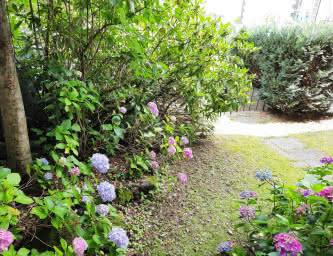 Jardin - Meublé Esbelin