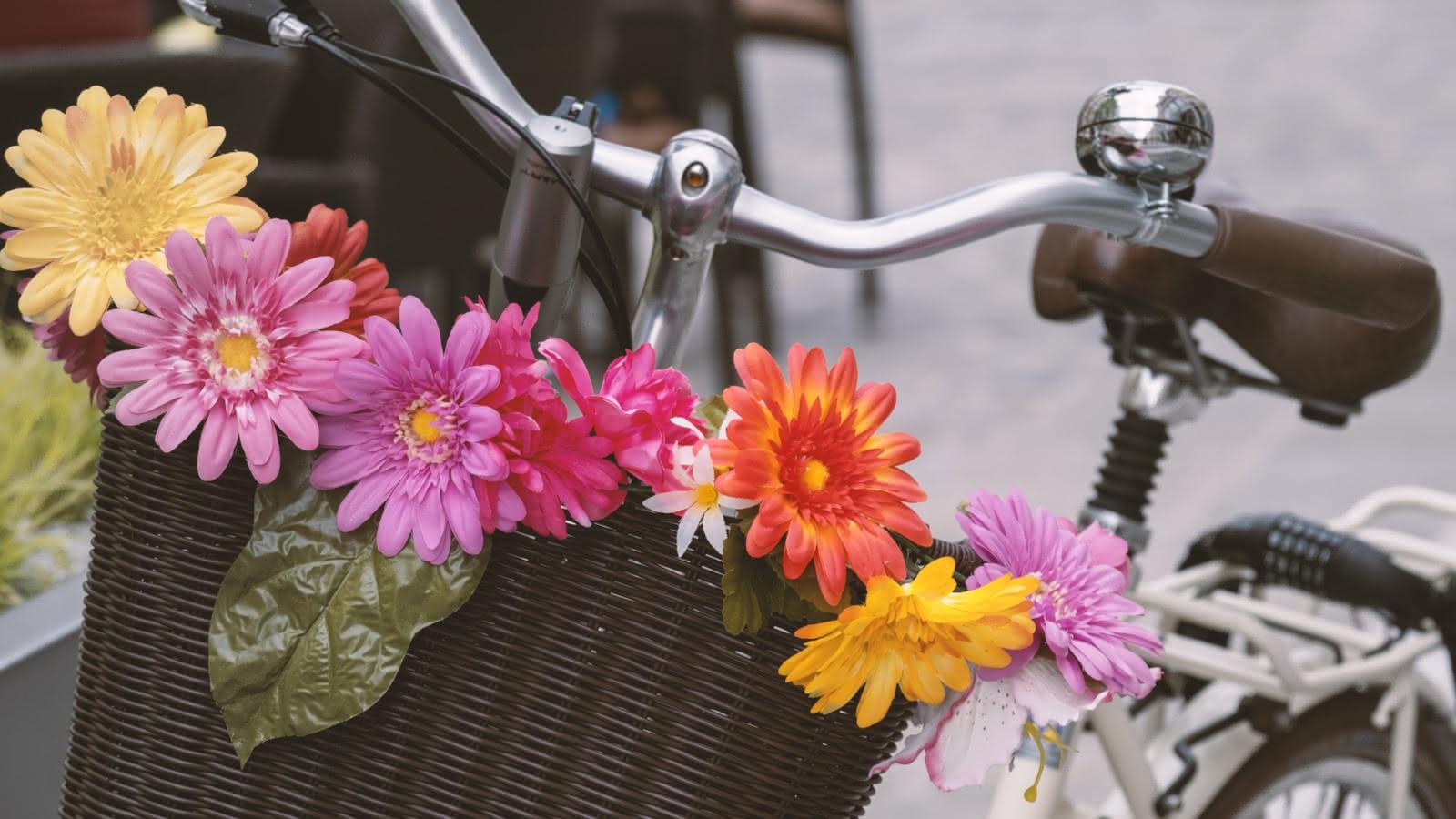 Découvrir Clermont à vélo
