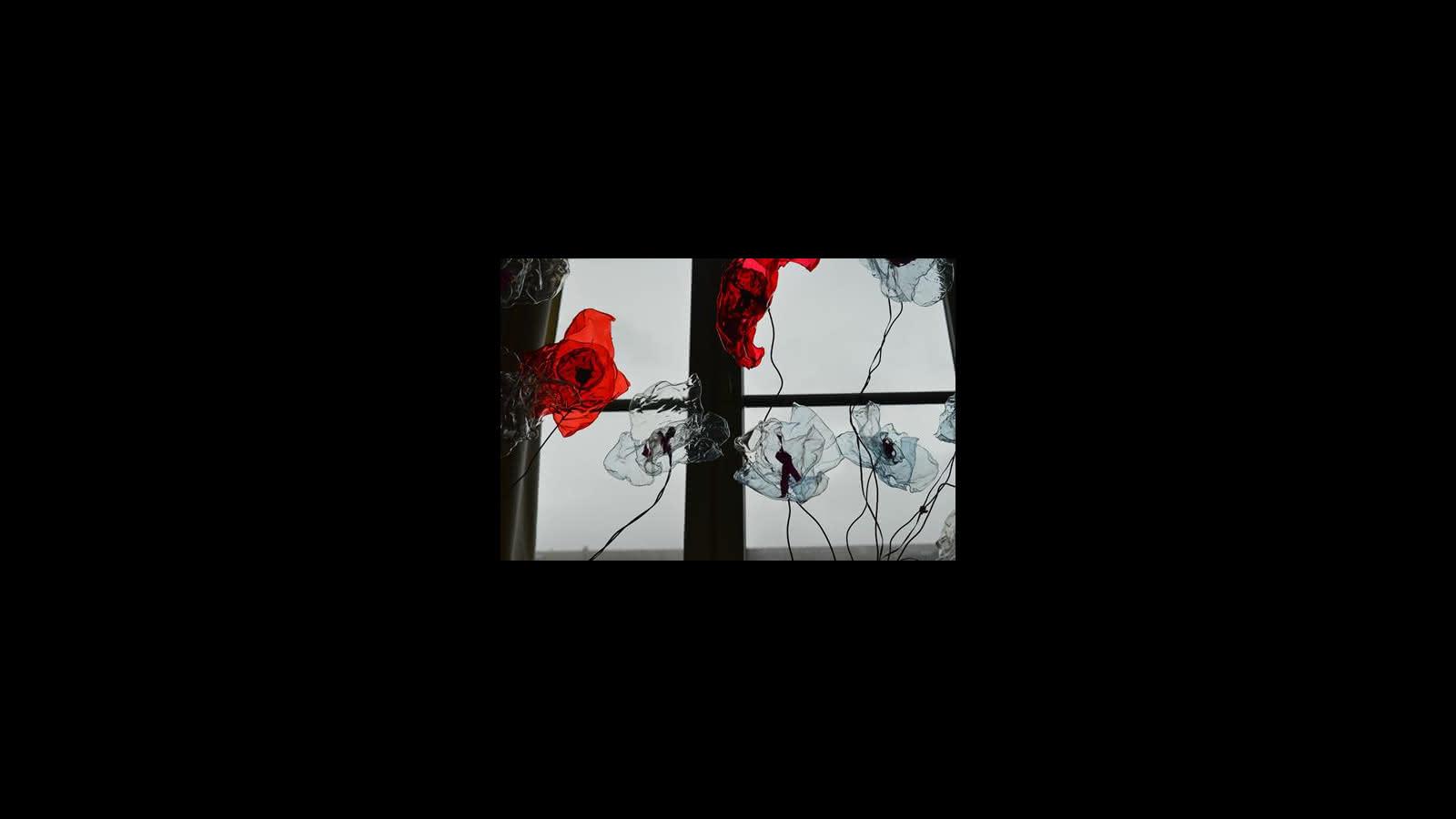 Le chant des fleurs - Lucie Prod'homme