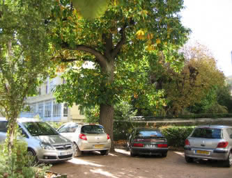 Villa Coustet Parking
