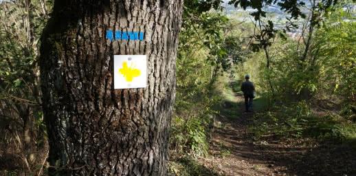Le chemin des Bateliers - Léa et Tino